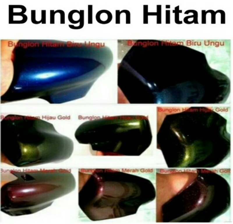 Cat bunglon hitam mix helypaints