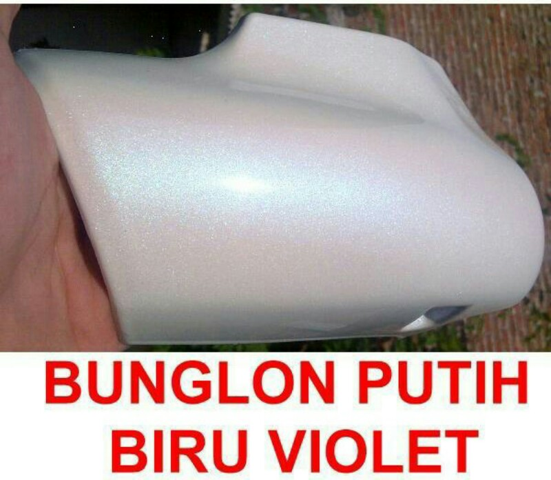 Cat bunglon putih blue