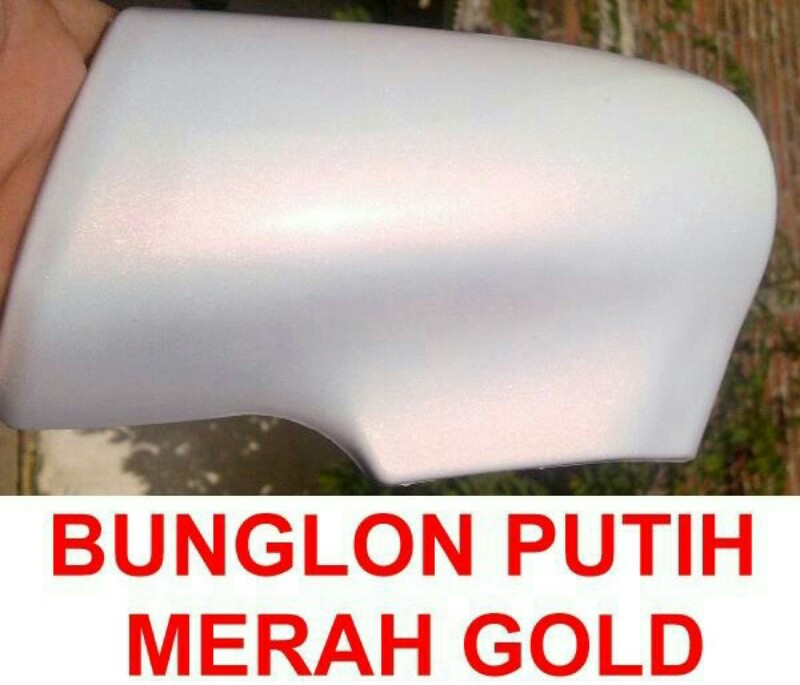 Cat bunglon putih red