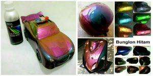 Cat Bunglon Mobil Merk Helypaints